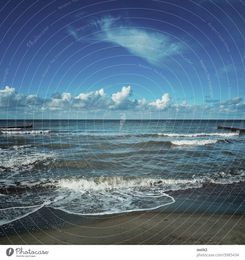 Background noise Baltic Sea Sky Clouds coast Elements Air Water Waves Maritime wide Sand Sandy beach Idyll Blue Lonely Landscape Environment Horizon Ocean Day