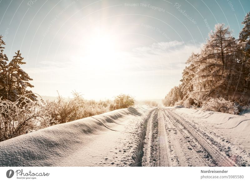 A winter dream, snowy country road in the sunshine Street Snow iced Virgin snow Winter Winter maintenance program onset of winter road conditions Snowfall