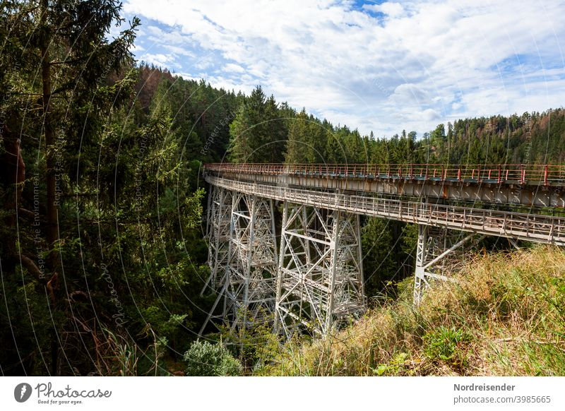 The Ziemestal bridge in Thuringia, old steel viaduct zieme valley bridge Bridge Railway bridge rails Railroad Valley Forest Manmade structures railway line