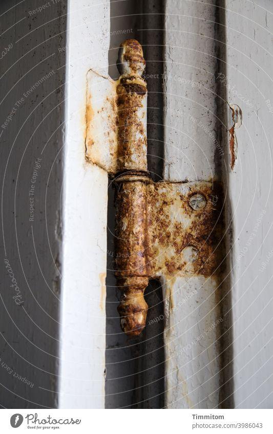 Aged hinge Hinge Old rusty Screw Wood Metal Interior shot Deserted lines Detail Rust Transience Decline Varnish