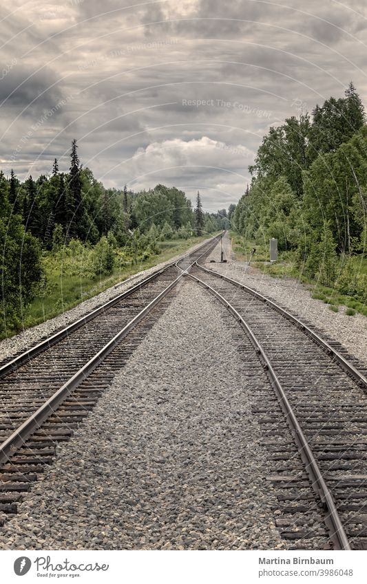 Two railtracks become one in the alaskan wilderness. Concept of merging together depression sad merge switch stand position of points rail track railroad