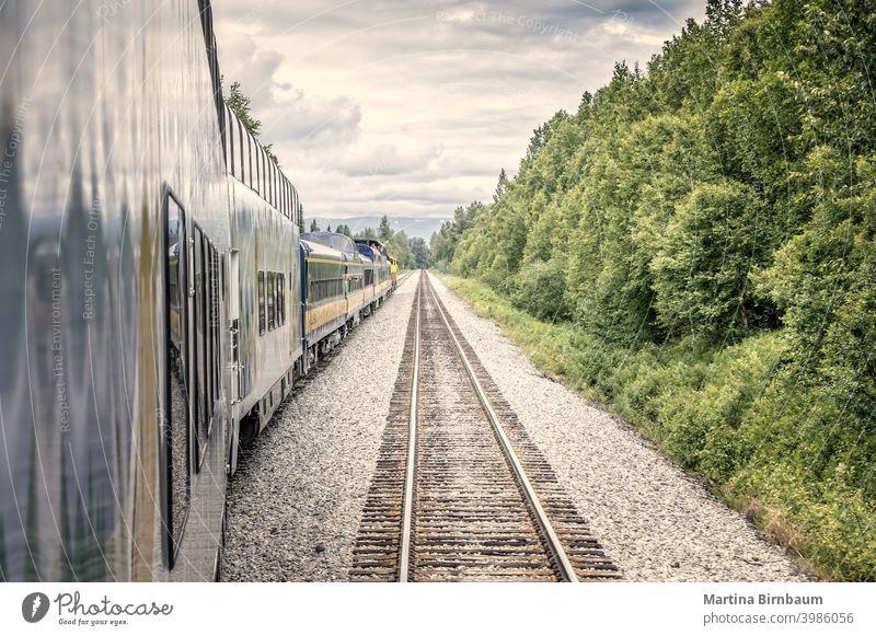 Straight forward, train and railtracks in the alaskan wilderness rail track railroad railway scenic denali national park landscape travel blue outdoor