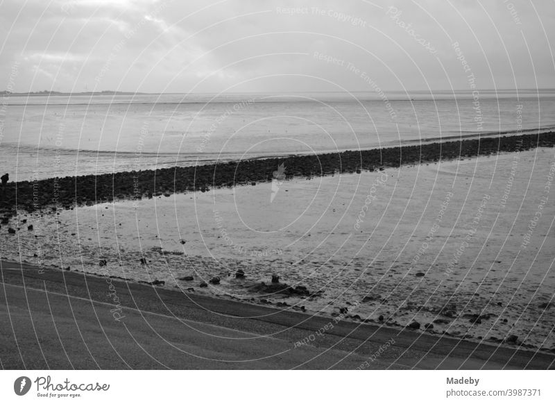 The Wadden Sea World Heritage Site on the coast of the North Sea in Norden near Norddeich in East Frisia in Lower Saxony, photographed in classic black and white