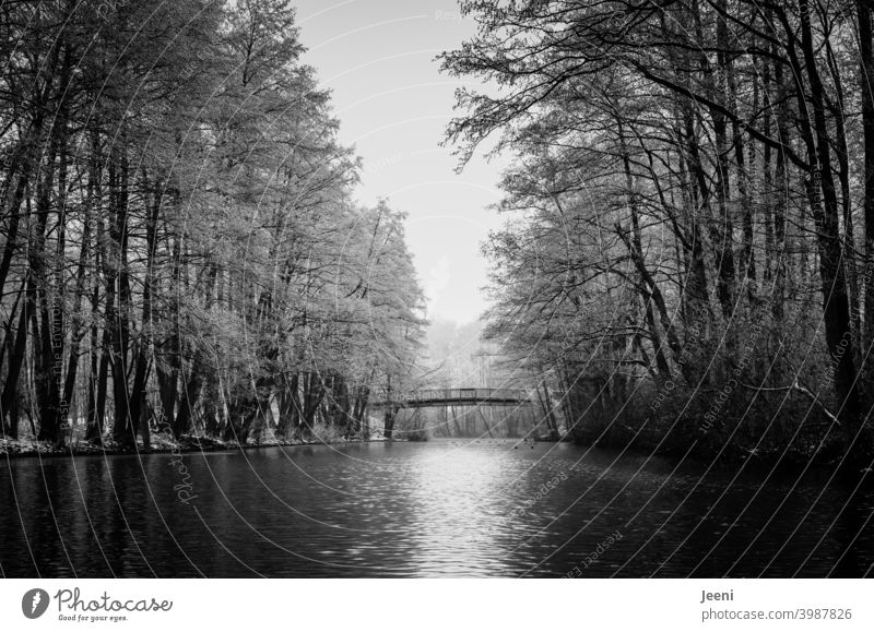 Enjoy the winter peace and quiet on the small river | Canoeing in winter during frost | Small wooden bridge over the water for pedestrians Water River