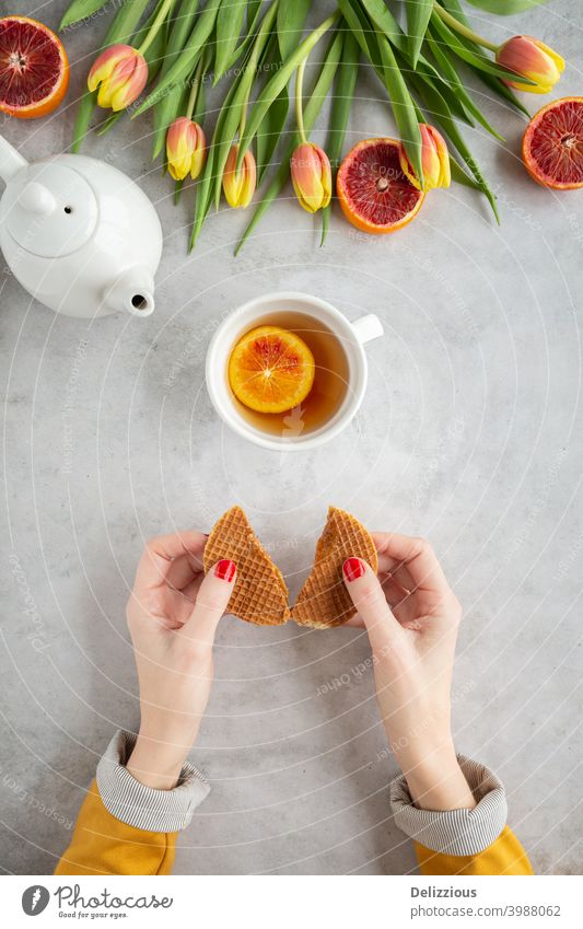 Top view of a woman holding a stroopwafel (Dutch syrup wafer) with a cup of tea and colorful tulips and blood orange on a gray background Beverage Brown colors
