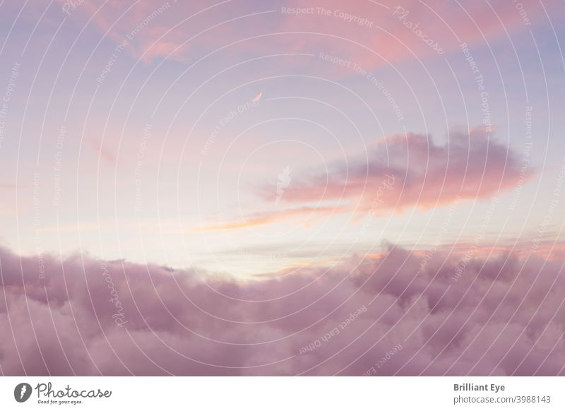 View of soft purple sky with fluffy clouds and crescent moon Abstract Atmosphere background pretty Beauty & Beauty Bright cloud landscape cloudy Colour