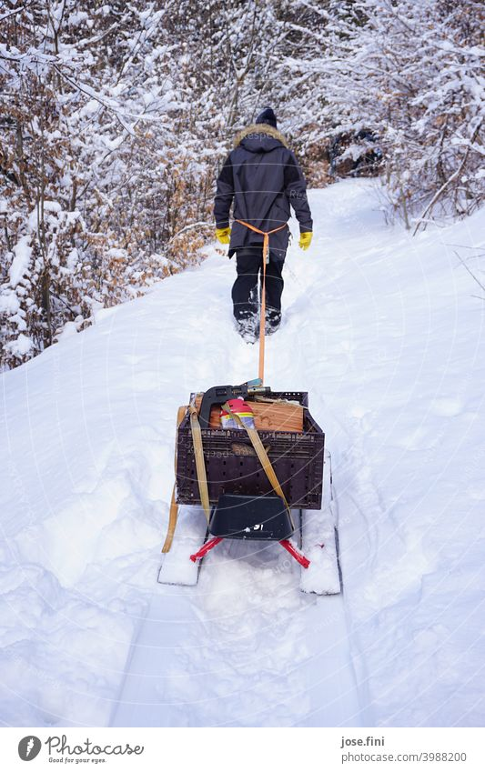 Man walking through the snow, pulling a packed sled behind him with a rope. Walking Hiking Snow Winter Cold Sleigh Forest Pull Wood Joy Nature one person
