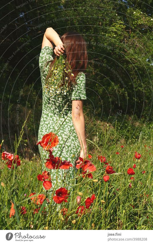 Back view of a young woman with long summer dress holding flowers in a poppy field Fresh naturally Retro Girl Slim Young woman Feminine pretty long dress pose