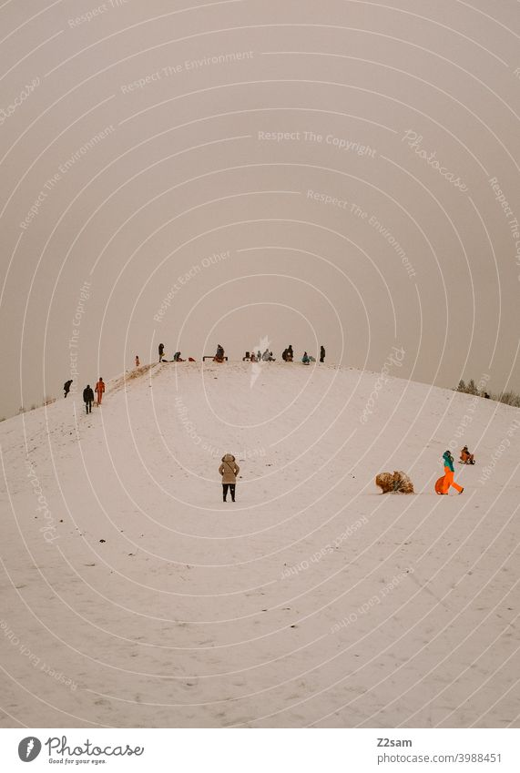 Toboggan on a snow covered hill Winter Landscape Snow chill people group Sledding sledging Sun warm colors Nature Sleigh Colour photo White Crowd of people