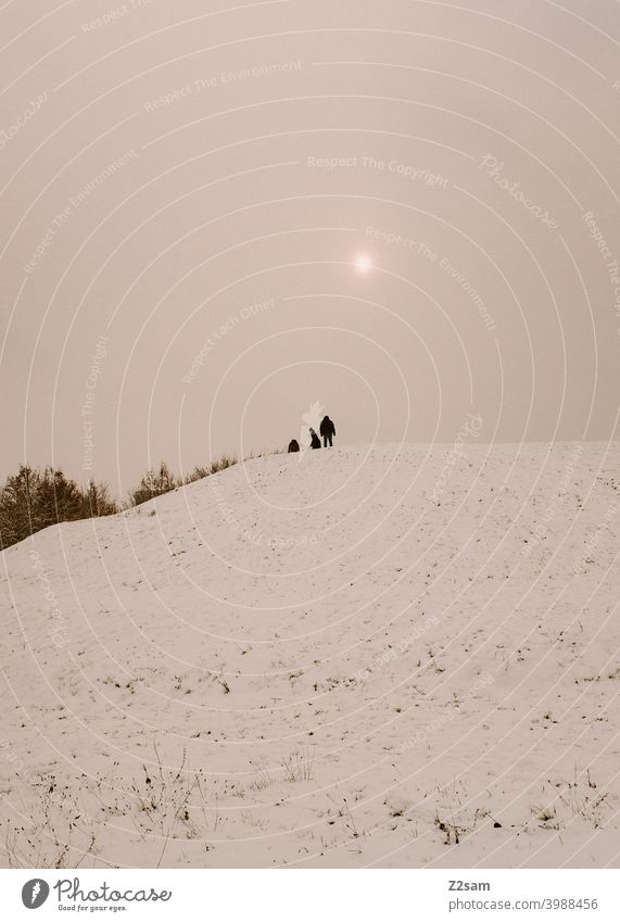 Toboggan on a snow covered hill Winter Landscape Snow chill people group Sledding sledging Sun warm colors Nature Sleigh Colour photo White