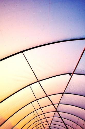 Plastic greenhouse cover with rusty frame at sunset. plastic roof industry drops droplet colorful purple yellow abstract construction interior dirty background