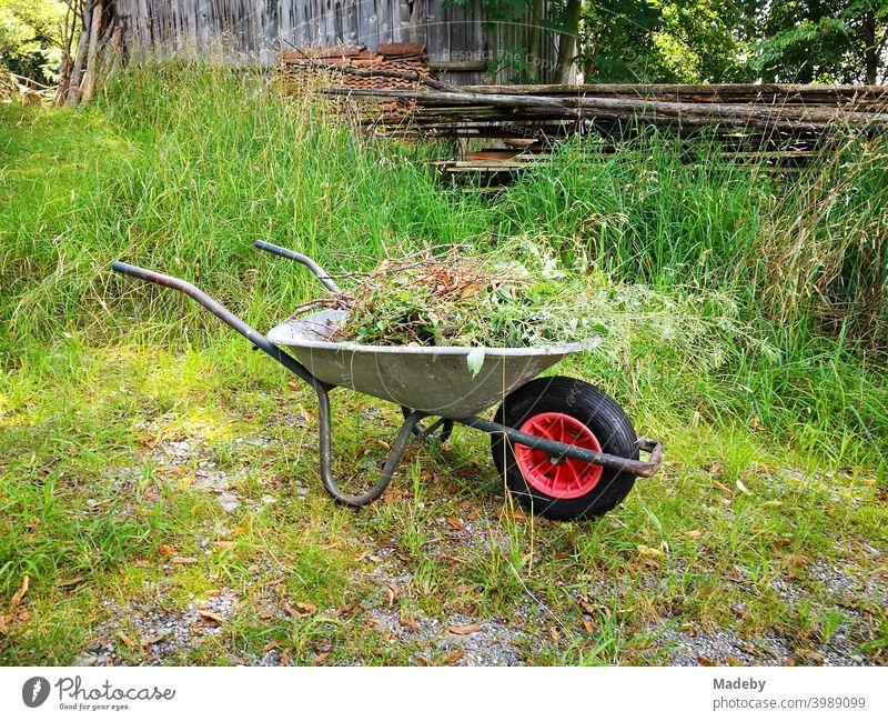 Wheelbarrow with garden waste in summer in the green on a farm in Rudersau near Rottenbuch in the district of Weilheim-Schongau in Upper Bavaria Garden