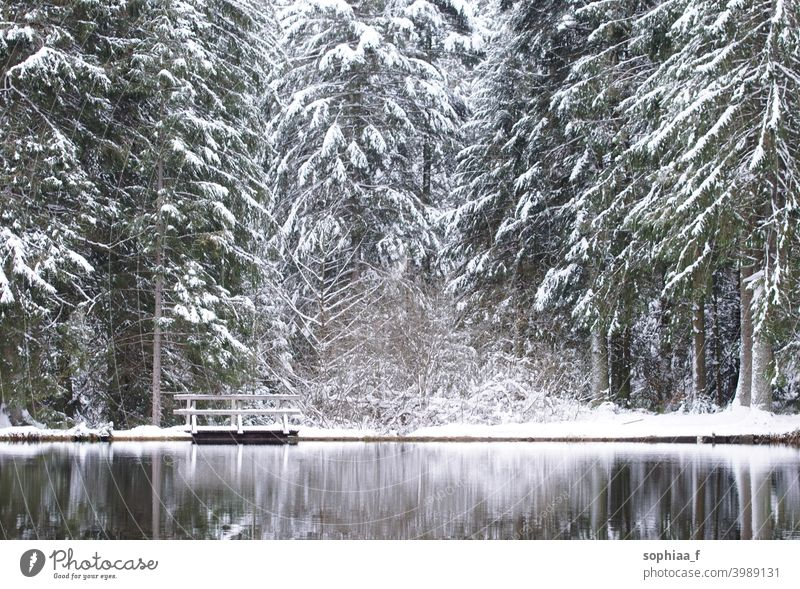 winter wonderland in coniferous forest - lake with small wooden bridge and snow on fir trees footbridge passing reflection black forest firs idyllic water