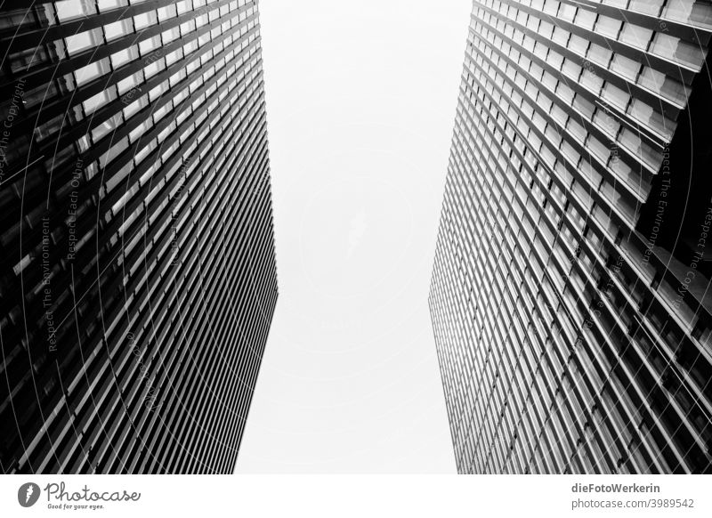 View into the sky between two skyscrapers Modern architecture out colourless Vanishing lines High-rise Building Rich in contrast Town Symmetry Gray Black White