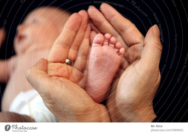 have a finger on the pulse hands Feet Baby Toes Family & Relations Domestic happiness To hold on Protection Size difference Safety (feeling of) Love Happy Trust