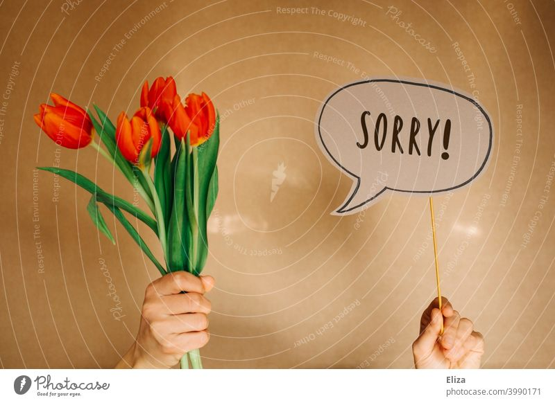 Hands holding a bouquet of tulips and a speech bubble with the word Sorry in it. Sorry. Apology sorry Remorse Bouquet apologize Speech bubble communication