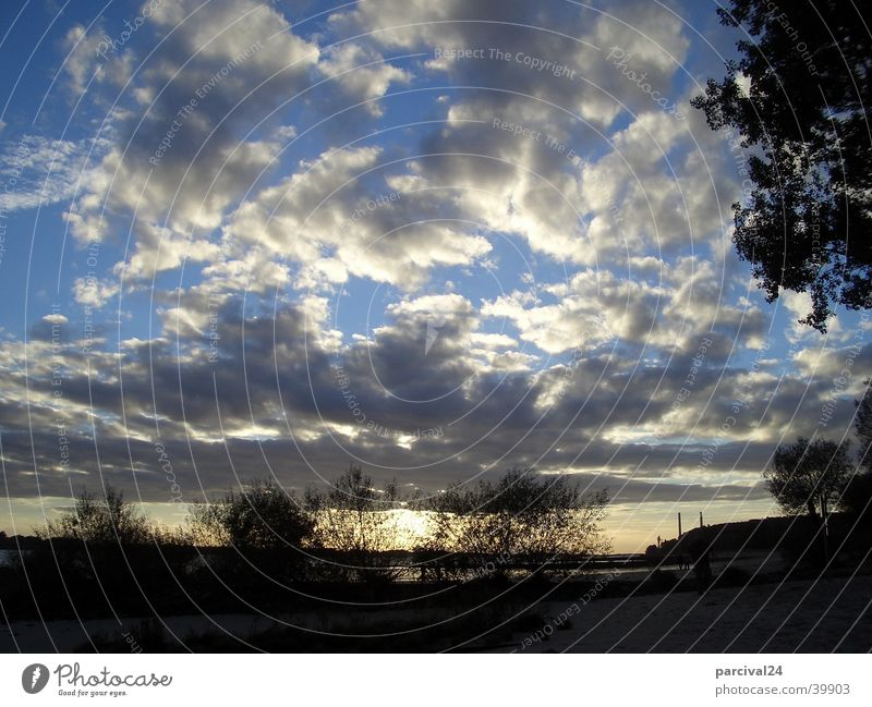 autumn sky Clouds Bushes Sunset Moody Light Sky Landscape Elbe Hamburg Blue