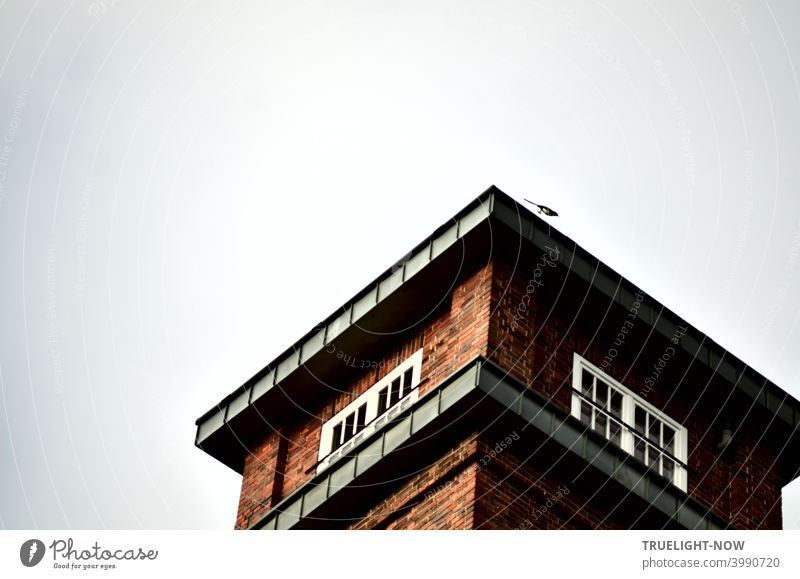 A magpie starts its flight from the top of the tower of a beautiful brick architecture commercial property in Babelsberg Tower Target Architecture Commerce