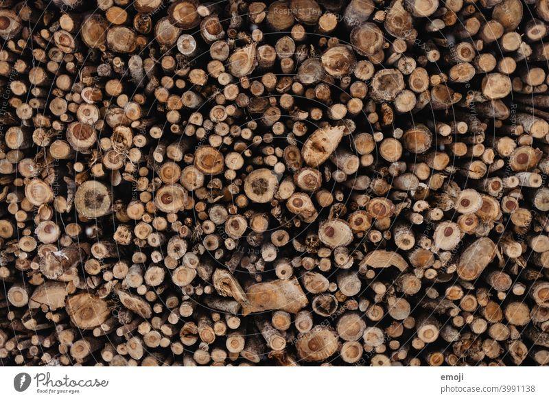 Background forest wood background Forest Wood naturally Nature Woodcut Circle Round warm wallpapers