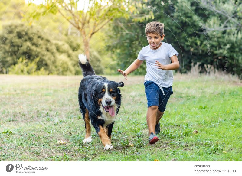 Little boy playing with a Mountain Dog outdoors active autumn black brown caring for animals caucasian child childhood cute dog fall field free freedom friend
