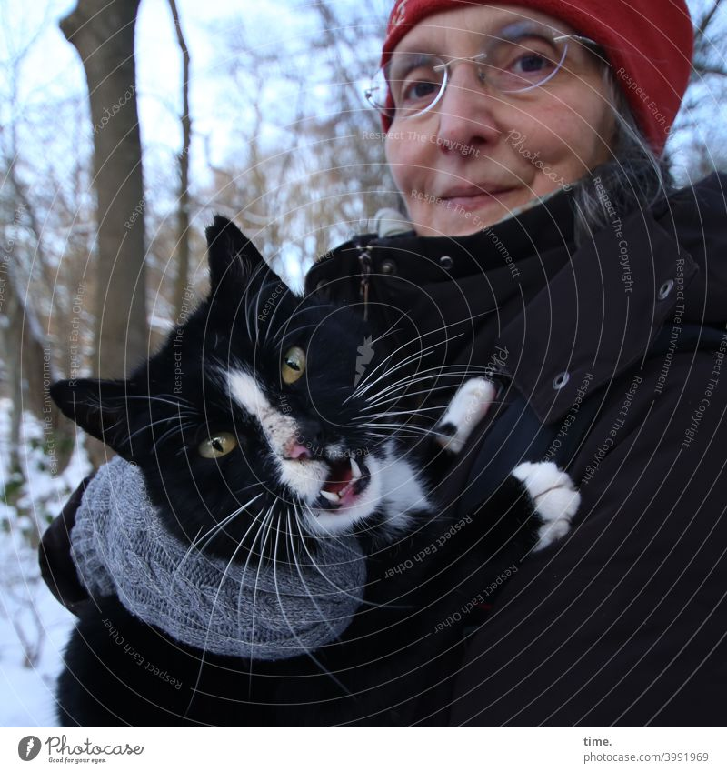 the unknown slightly confused cat in the forest seems to be demanding to be brought home Cat Woman portrait animal portrait Feminine Winter stop nervous Forest