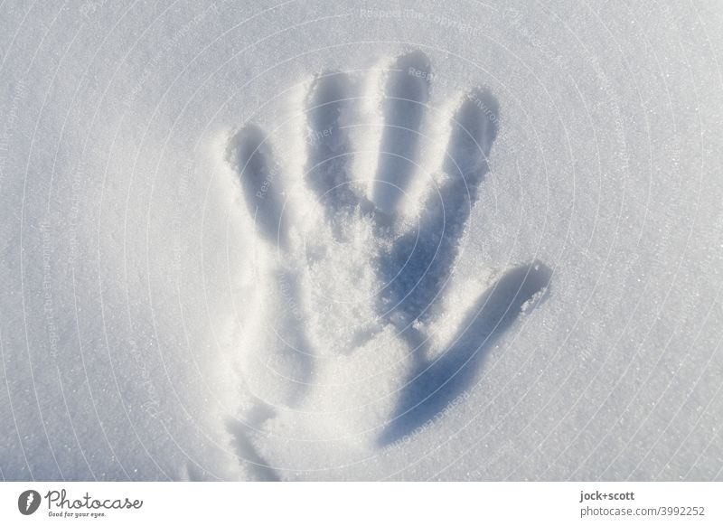 Handprint In Fresh Snow handprint Snow layer Cold White Winter mood Simple cold hand Silhouette Background picture Imprint Sunlight Shadow Signs of life Touch