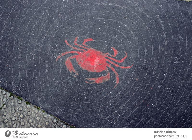 red crab on asphalt Shrimp Cancer Edible crab Asphalt Street Ground painted on sprayed on Fish market Harbour Fish restaurant Natural history museum street art