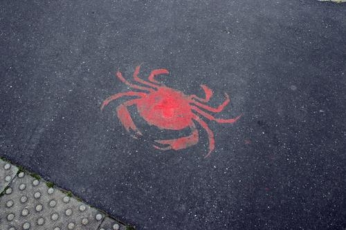red crab on asphalt Shrimp Cancer Edible crab Asphalt Street Ground painted on sprayed on Fish market Harbour Fish restaurant Natural history museum street art
