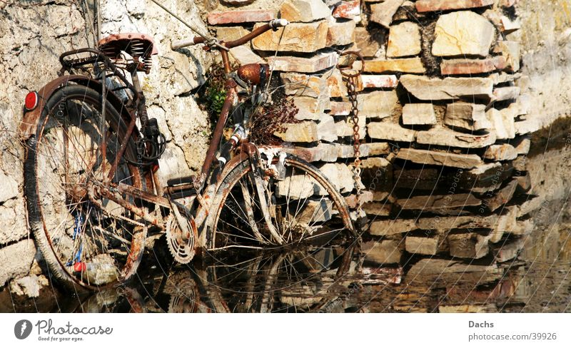 Bike on the way into the water Wall (barrier) Obscure Bicycle Harbour Water Rust Go under