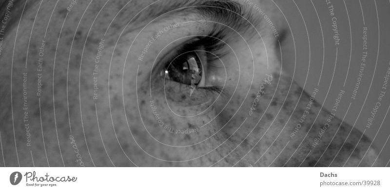Woman Face Eyes Longing