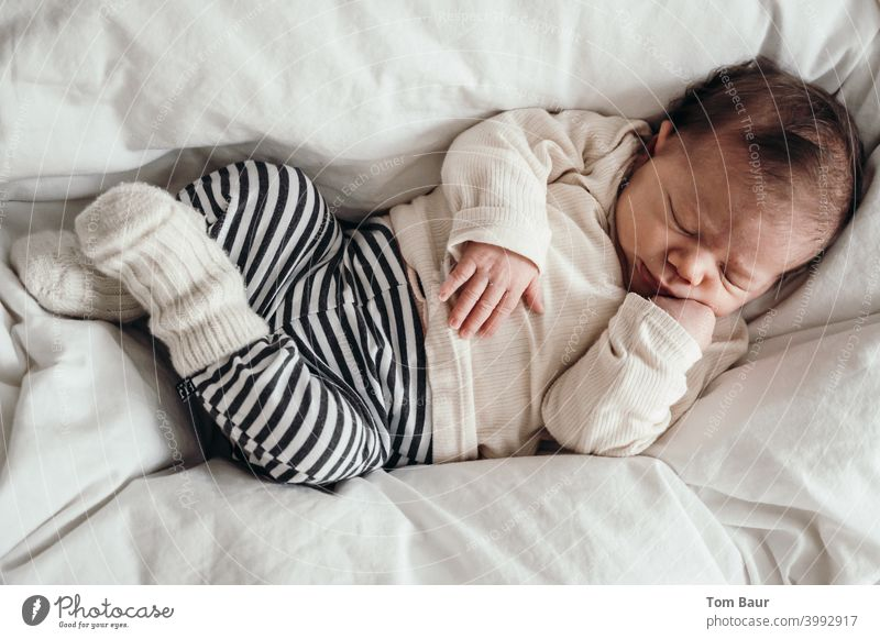 Procrastination - baby lies cuddled up on duvet with legs crossed and hand under chin sleeping Baby Sleep Peaceful Dream Cute Blanket Small cute Innocent Face