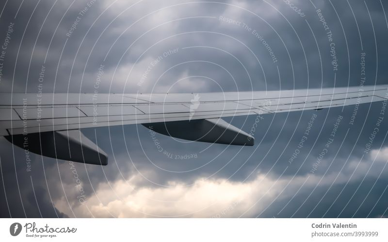 Plane wing on the sky aerospace manufacturer air air travel aircraft airline airliner airplane airport animal aviation bird bomber cloud clouds cloudy day