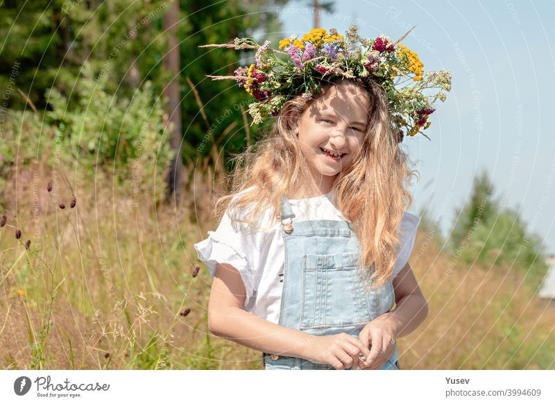 Cute pretty smiling girl with a wreath of wild flowers on her head. Summer vacation in nature. Happy childhood concept. cute smile beauty fresh summer happiness