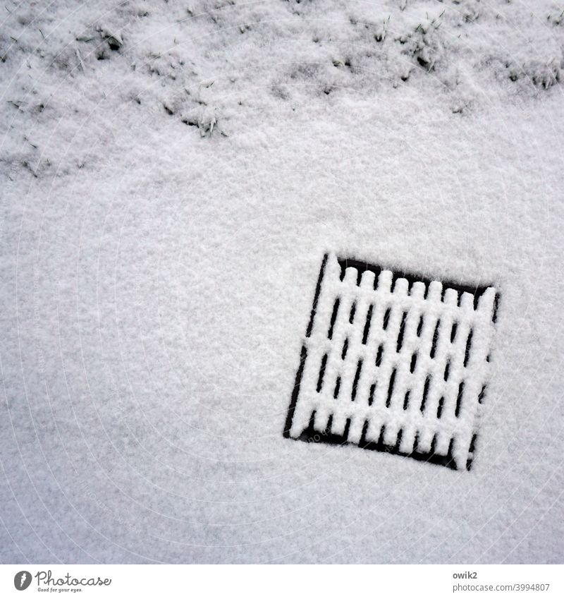 Snow Gully manhole cover Snow layer Winter Kale White Cold Deserted Exterior shot Ice Nature Snowscape Colour photo Frost Roadside Grating Detail Drainage