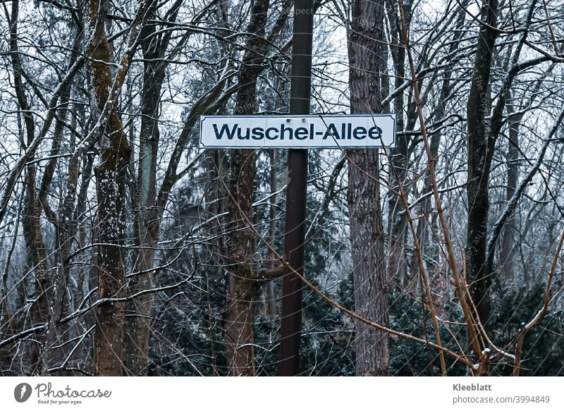 "Here you are allowed to ""fuzz""! Signpost at the edge of the forest with the inscription ""Wuschel-Allee"". Road marking Lanes & trails Signs and labeling"