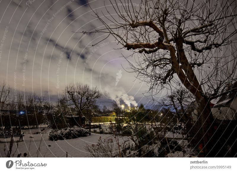 Garden in winter Evening Branch Tree Dark Twilight Relaxation holidays Sky allotment Garden allotments Deserted Night Nature Plant tranquillity Snow Snow layer