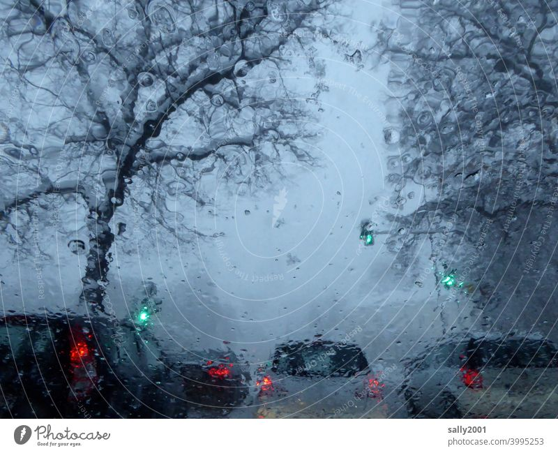 onset of winter... Winter Transport car Road traffic Snow Wet Traffic light Green Weather Bad weather visual impairment Street Motoring Traffic infrastructure
