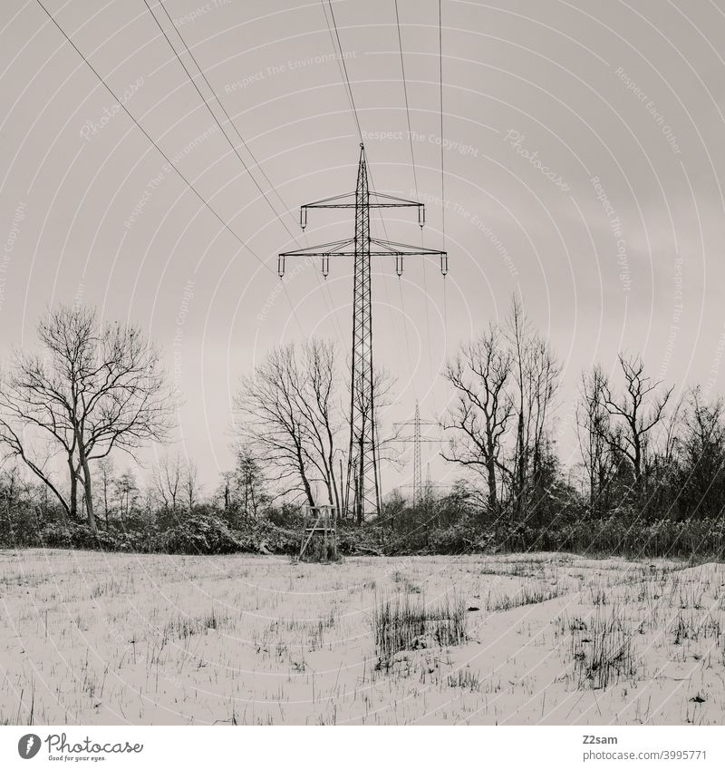 Electricity pylons in winter landscape Winter walk Landscape Nature trees chill Frost Lonely tranquillity relaxation Moody Winter mood Winter's day Forest