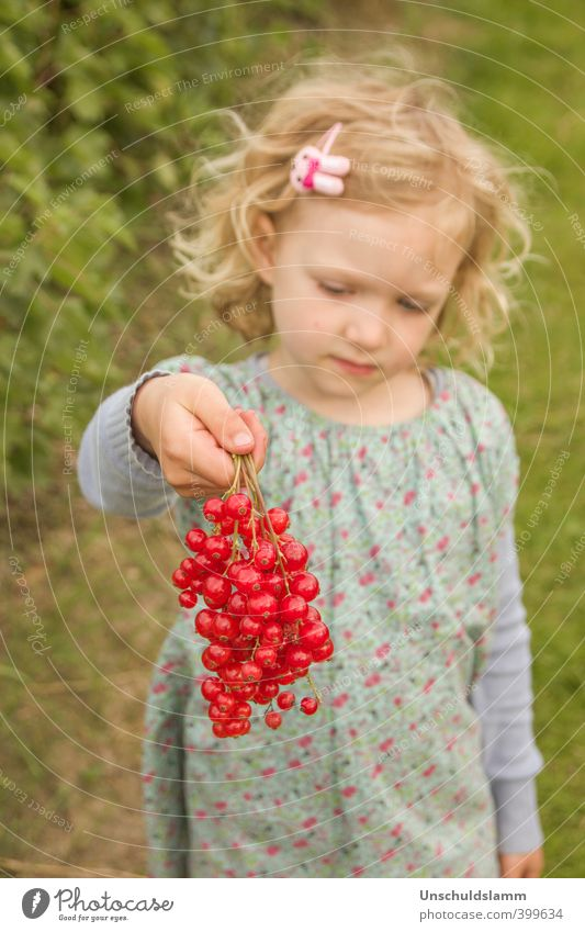 Human being Child Nature Plant Colour Summer Red Girl Life Natural Healthy Happy Garden Lifestyle Fruit Living or residing