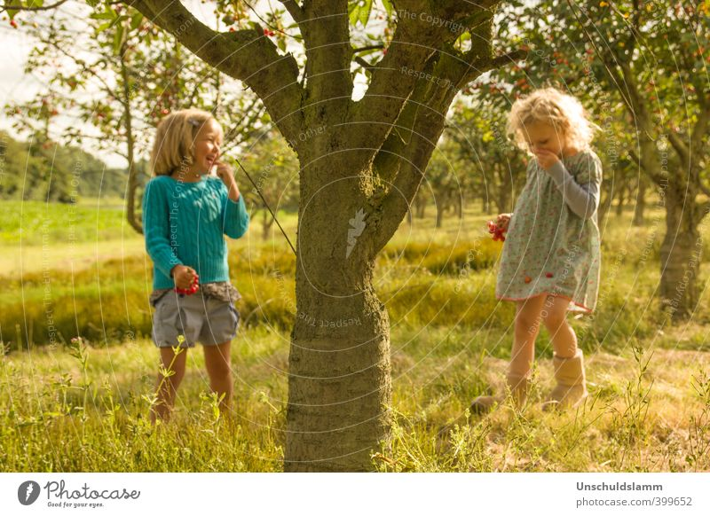 Human being Child Nature Summer Sun Tree Girl Joy Environment Meadow Emotions Playing Laughter Happy Garden Friendship