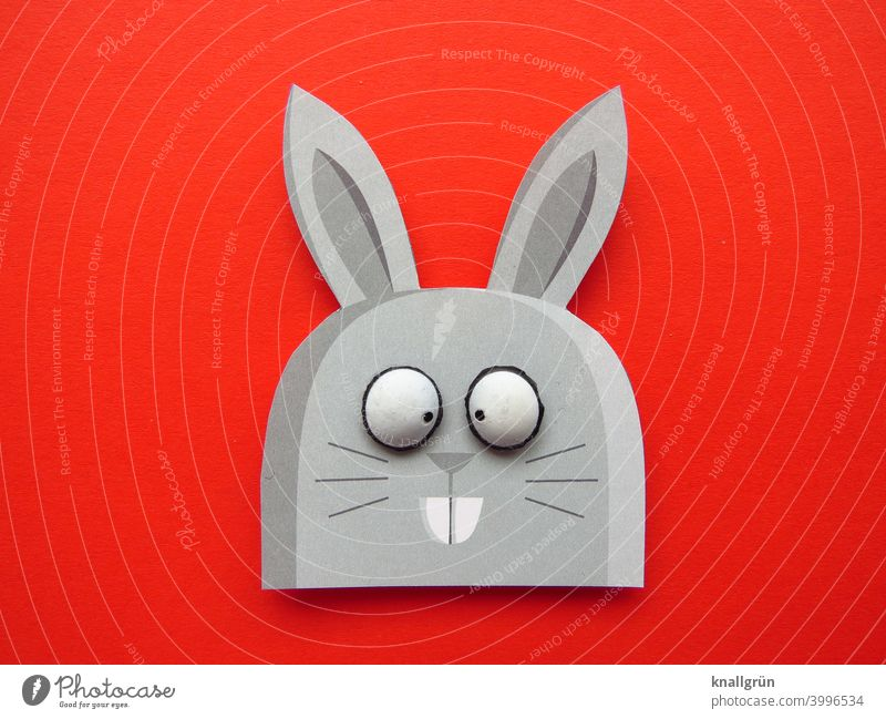 rabbit Hare & Rabbit & Bunny Squint Easter Easter Bunny Funny Animal DIY Handicraft wittily big eyes Colour photo Red Gray Black White Buck teeth Hare ears