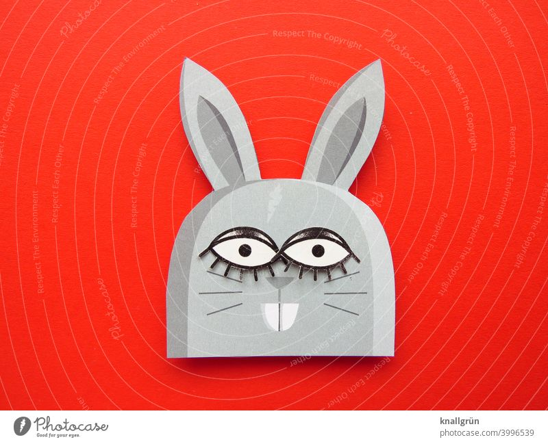 hasi Hare & Rabbit & Bunny Rodent Easter Easter Bunny Funny Animal big eyes Buck teeth DIY Handicraft Looking Colour photo Cute wittily Paper Hare ears Deserted
