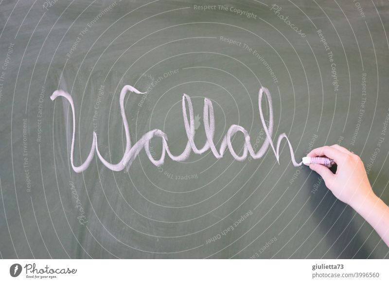 Wallah - youth word written on the blackboard with chalk Central perspective Day Colour photo Blackboard Chalk youth language Cool (slang) Colloquial speech