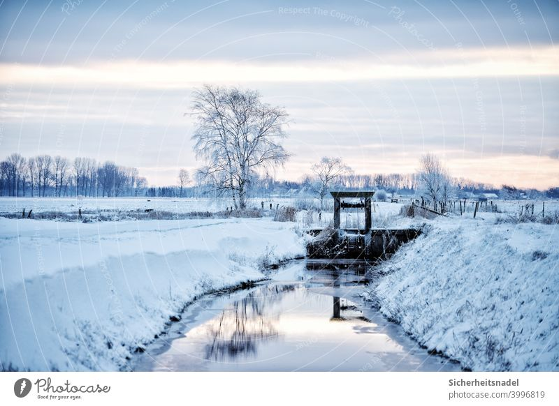 winter landscape Winter Snow White Ice Cold Frost Nature Frozen Freeze Deserted Winter mood Exterior shot Winter's day Snowscape Fleet Dig Reflection chill