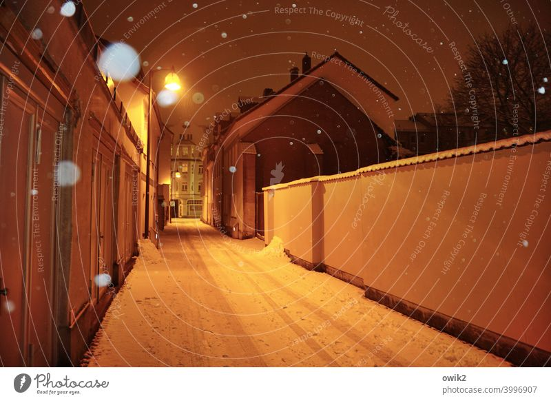 Shrouded alley Town Small Town Building Snowflake Snowfall Cold House (Residential Structure) Colour photo Street lighting Calm Subdued colour Deserted