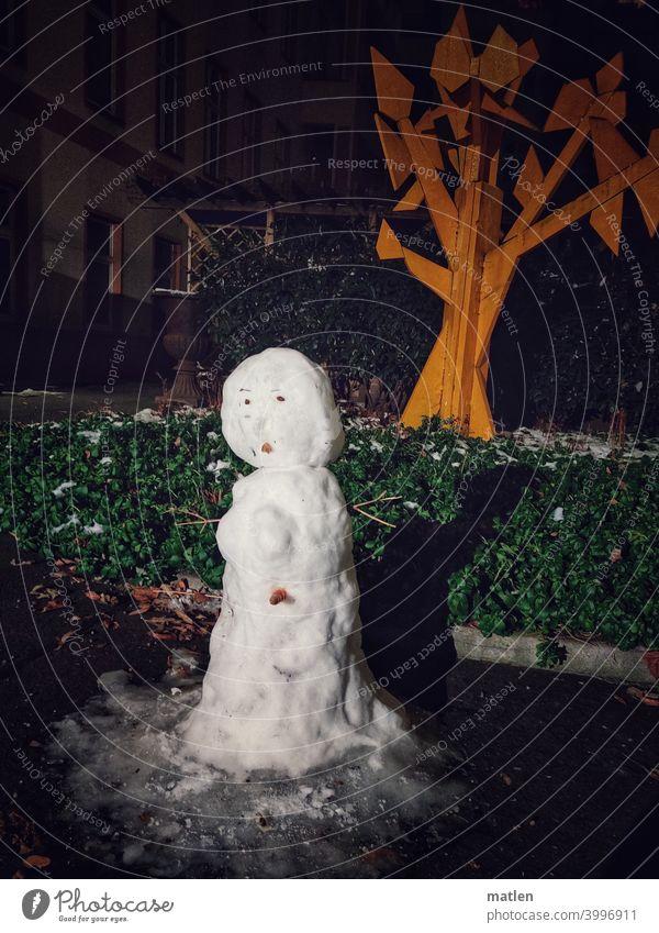 Snow White Snowman Thaw Carrot pavement Winter Exterior shot Seasons