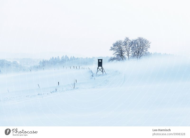 Winter snowy field with high stand chill Snow Cold Freeze Frost Landscape Hiking Discover high level Climate Nature Winter mood winter December January