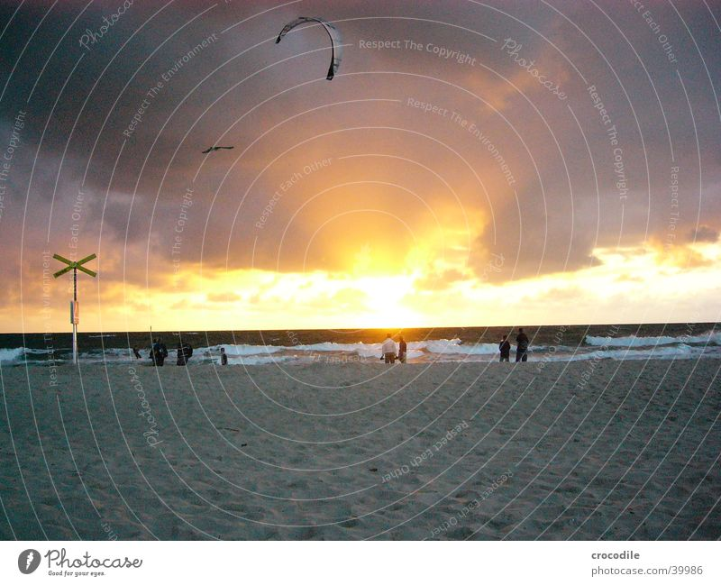 kiters Kiting Beach Sunset Dark Yellow Black Sports Playing Dragon Evening boarder Human being Sand Bright Orange Back