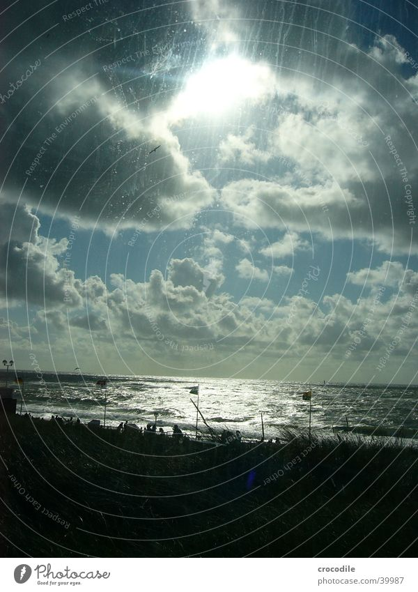 Human being Sun Ocean Blue Beach Vacation & Travel Clouds Bright Bird Waves Germany Wind Gale North Sea Sylt Westerland