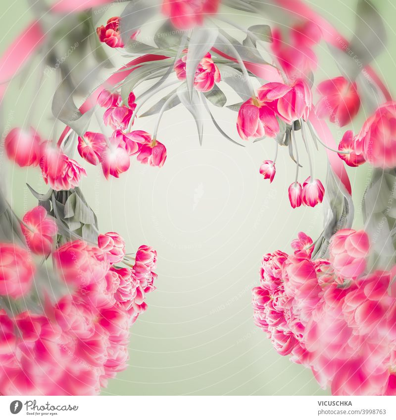 Beautiful tulips frame with copy space for your design. Pink tulips flowers at light green. Springtime background beautiful pink springtime romantic branch